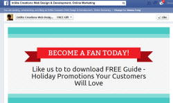 Sample of a Facebook Fan Squeeze Page